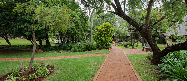 koubad farm lodge, accommodation paulpietersburg, child-friendly accommodation, family activities with accommodation, rhino and wildlife, wildlife accommodation