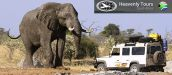 SAFARI TOURS IN SOUTH AFRICA - HEAVENLY INTERNATIONAL TOURS S.A.