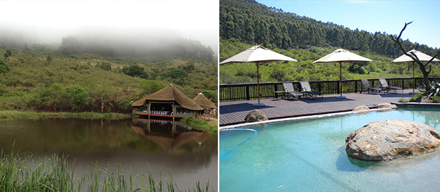 insingizi, game lodge, spa, pietermaritzburg, durban, illovu, self catering, guest house, accommodation, wedding venue, conference venue, functions