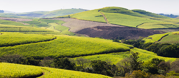 Valley Of A 1000 Hills Durban Outer West In Kwazulu Natal